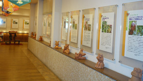 沖縄フルーツランドにはフルーツギャラリーがございます。トロピカル王国物語で見学できるフルーツの原産地や由来などのエピソードを知ることができます。パインを始めパパイヤ・ドラゴンフルーツなどぜひご覧下さい
