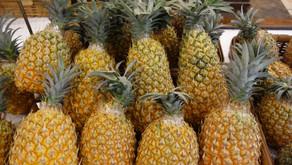 手でちぎって食べることができるパイナップルってご存知ですか?スナックパインです。沖縄のフルーツの中でも大人気、フルーツランドでも入荷待ちが続くほど人気です。夏にかけマンゴーなども登場してきます。
