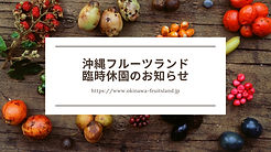 Rare Exotic Fruits Blog Banner.png