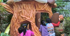 沖縄フルーツランドは絵本の世界を冒険するテーマパークです。その名はトロピカル王国物語。たくさんのフルーツや魔法や秘密に囲まれたテーマパークです。トロピカル王国の王様を助け出す旅にでかけよう!!