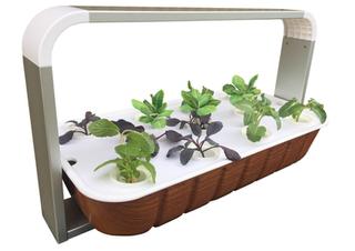 Mini Farm Classroom Hydroponic system.pn
