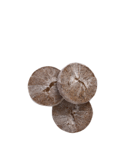 Coco Peat Jiffy Seedling - 25 Starter Pack
