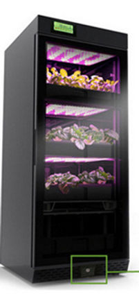OwnGrown is a Hydroponic Indoor Garden available through Urban Green Farms