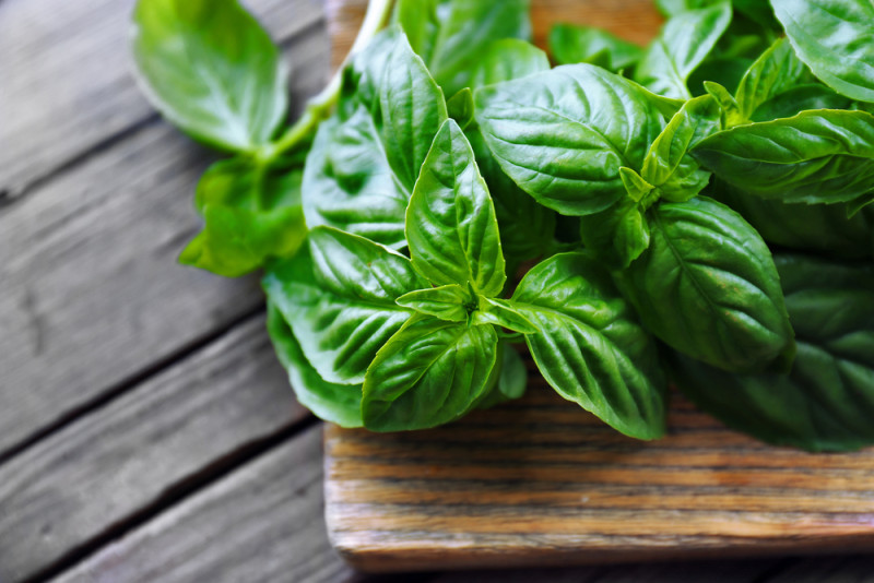Science-Backed Health Benefits of Basil