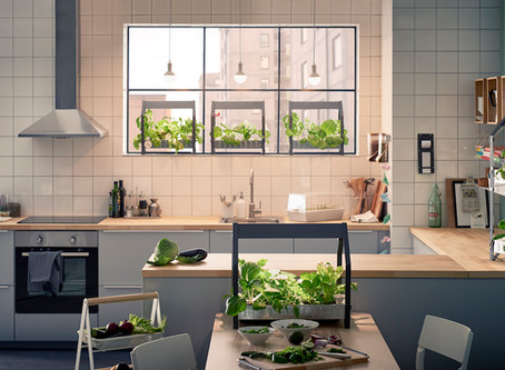 Indoor Garden Ideas: For apartments and small spaces!