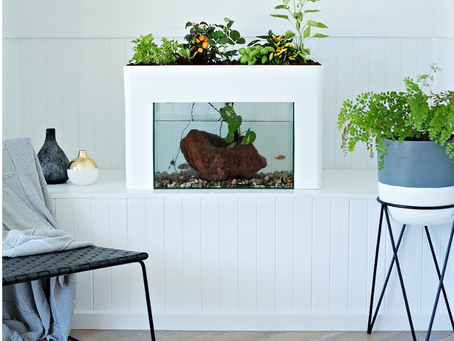 Indoor Gardens with Urban Green Farms: