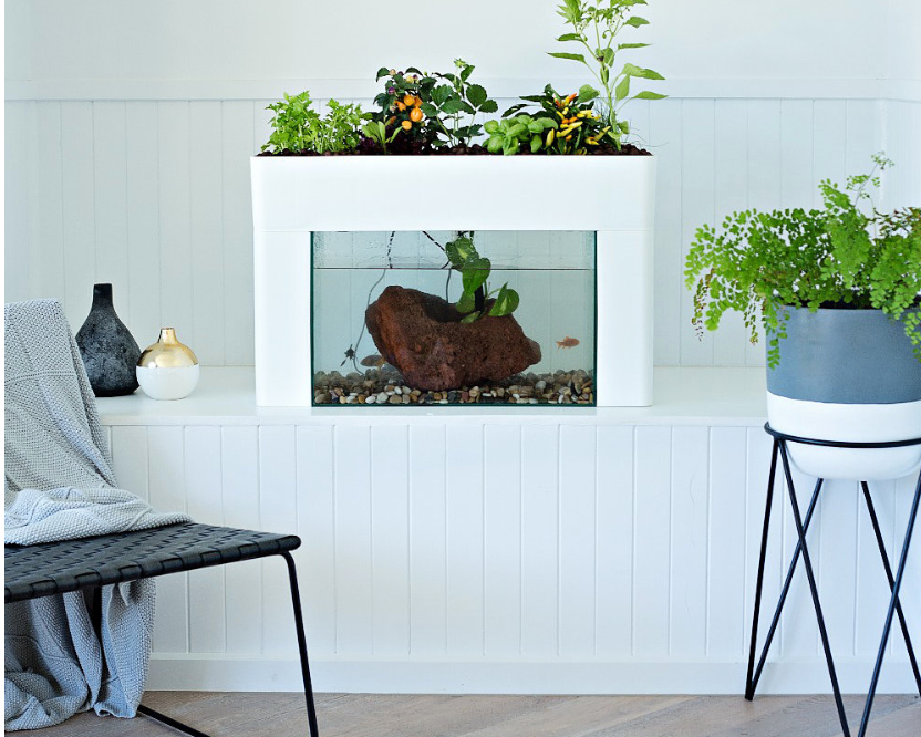 Aquasprouts Indoor Garden available through Urban Green Farms