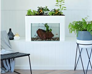 Aquasprouts Indoor Garden available through Urban Green Farms