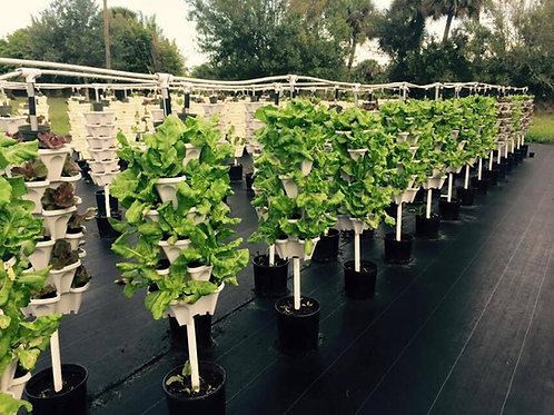 Vertical Farms- Hydroponic Farms by Urban Green Farms