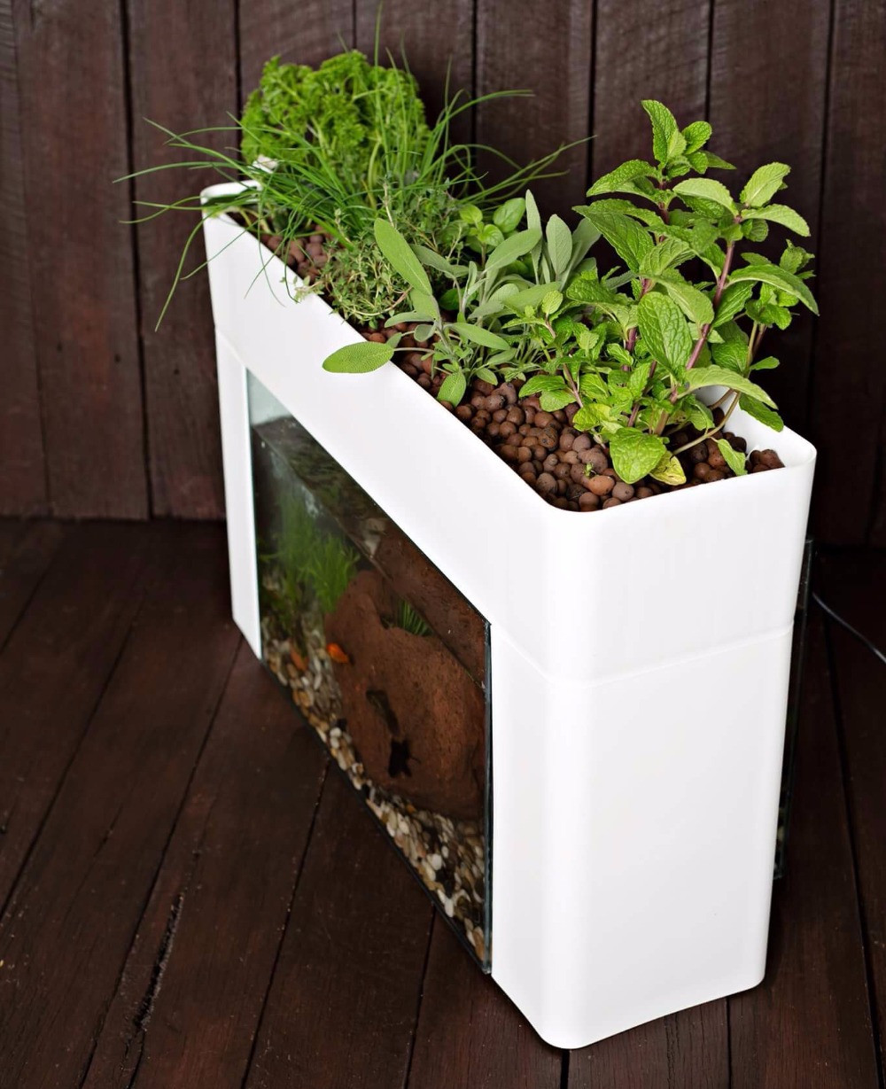 Aquasprout Urban Indoor Farm