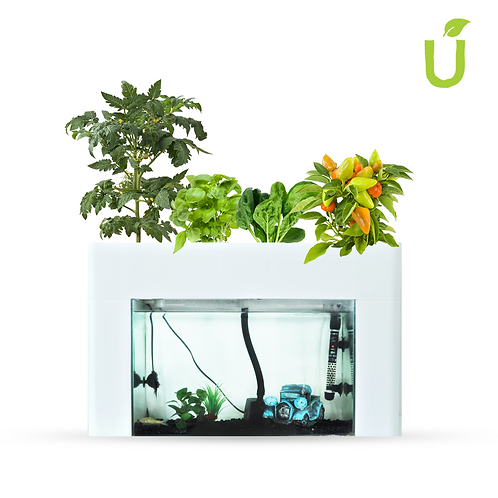 Aquasprouts Kits and Bundles- Aquaponics Australia