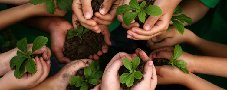 child-friendly-gardening-1-750x300
