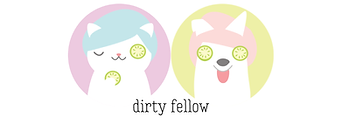 dirty fellow logo.png