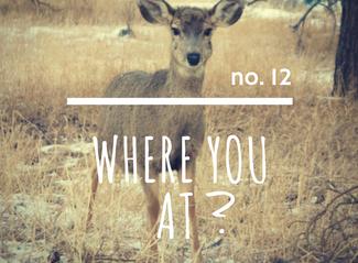 no. 12: Where You At?