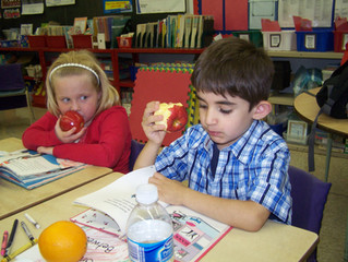 Durham's Child Nutrition Project
