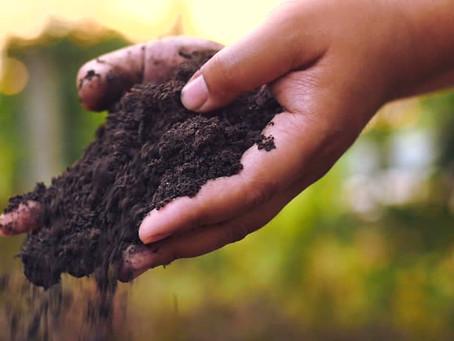 Till The Soil.