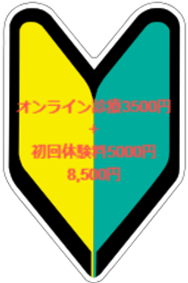 オンライン初診料3500円+初回体験料金5,000円