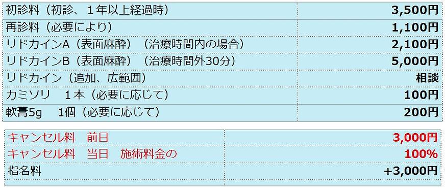 レーザー脱毛その他料金.jpg