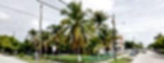 Havanna.jpg