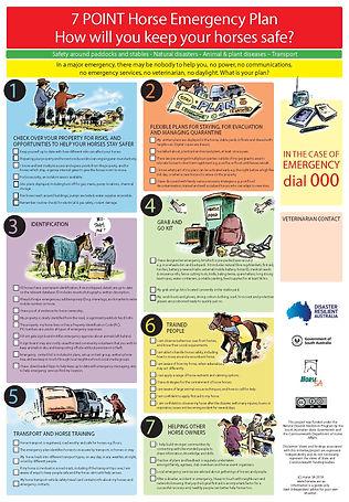 Horse SA Emergency Plan A2 170218.jpg