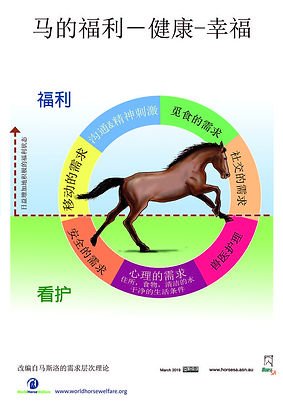 Horse Welfare - circle diagram RGB A3. B