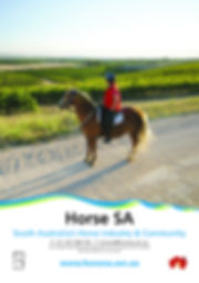 HorseSA_insert_HR_no_pm.jpg