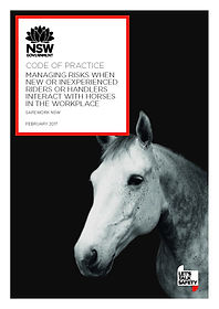SW08262-Code-of-Practice-Managing-risks-