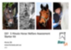 DIY Welfare Assessment HorseSA-V2_Page_1