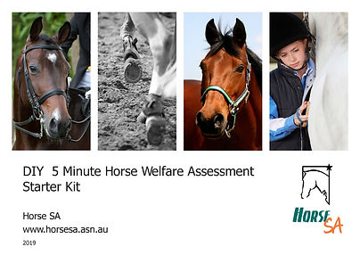 DIY Welfare Assessment HorseSA-V2_Page_1