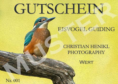 Gutschein-Vorlage-Eisvogel-Guiding.jpg