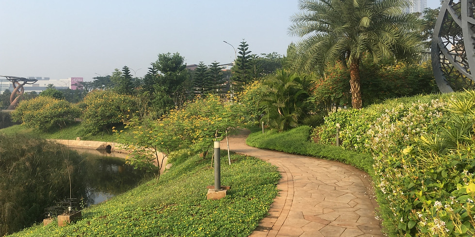Other Side of BSD City