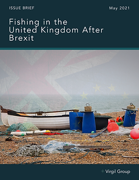 UK Issue Brief - FINAL Cover image.png