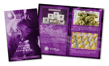 VLA BrochCvr+Sprd.jpg