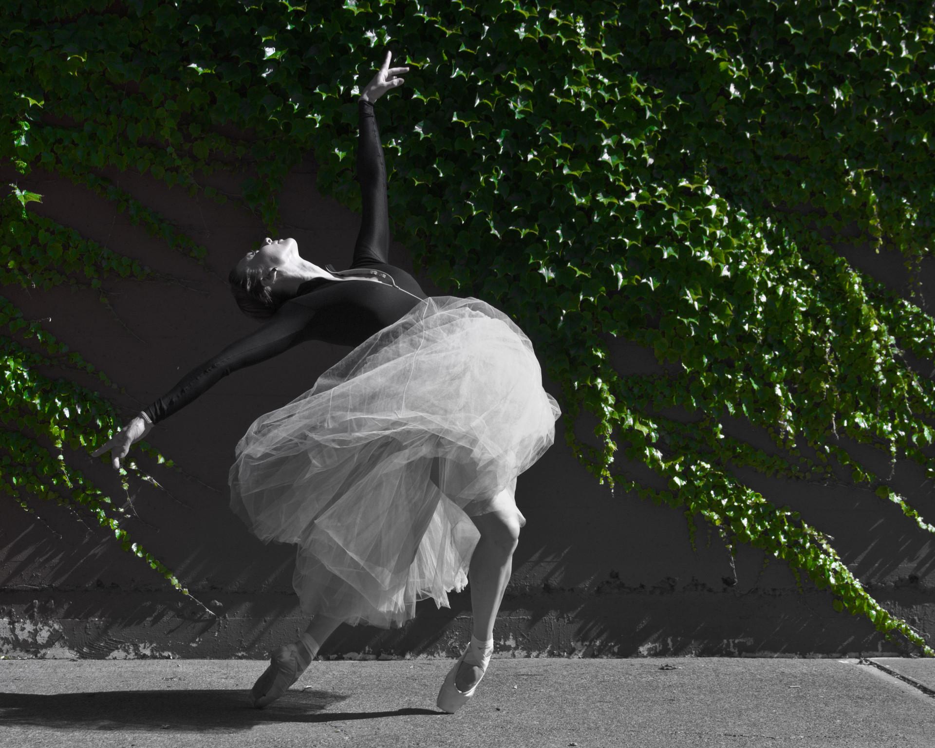 DANCE 14.jpg