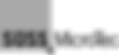 1200px-Süss_Microtec_logo.svg.png