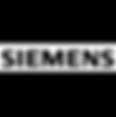 siemens-3.png
