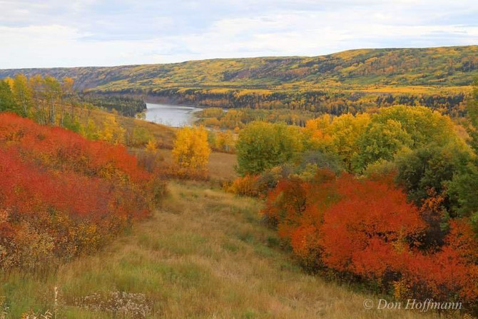 2015: Stop the Site C Megaproject and Keep the Peace Valley Intact Forever