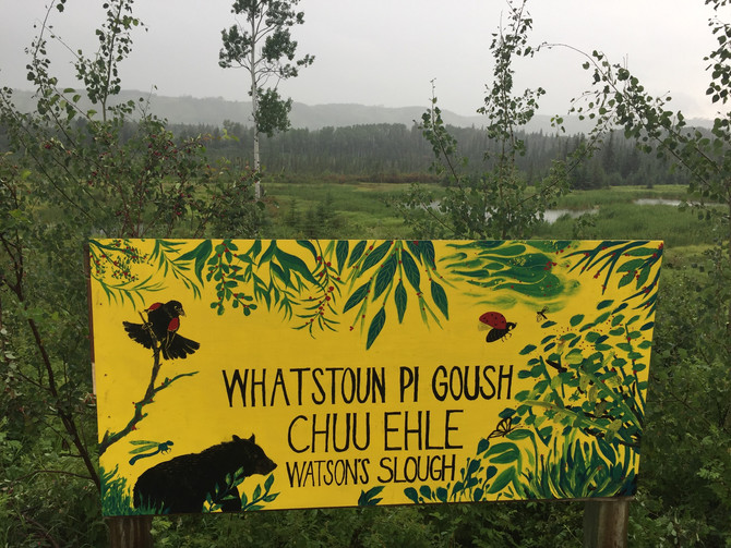 WATSON SLOUGH: A TREASURE IN THE PEACE RIVER VALLEY
