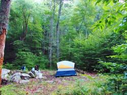 North Creek Primitive
