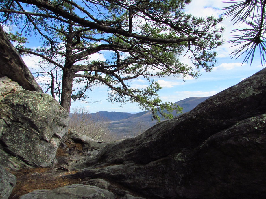 FREE Guided Hike August 20th