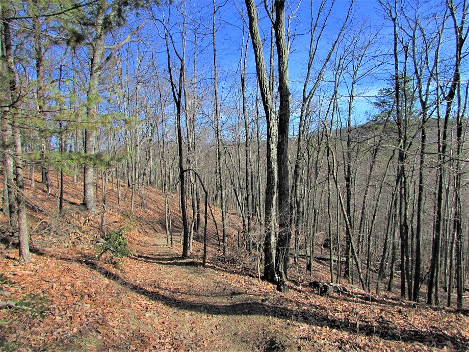 Join a Day-Hike Dec-Feb (Weekend)
