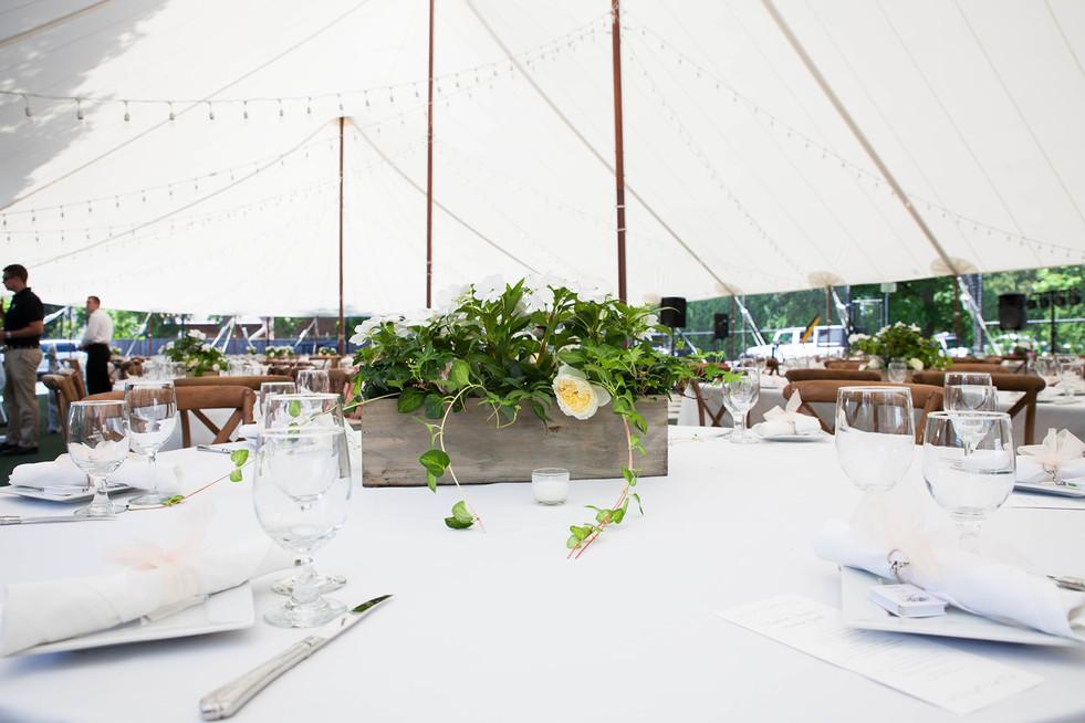 Wedding Website Photos23.jpg