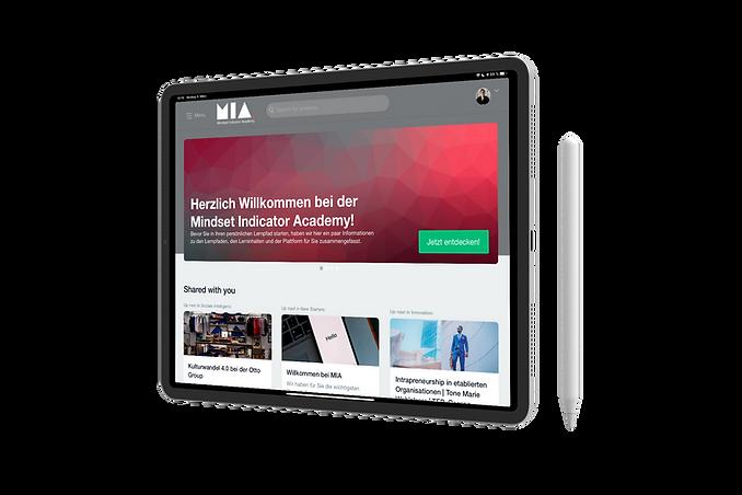 Mindset Indicator Academy Customizing