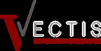 vectis, consulting, unternehmerberater, organisationsberatung, systemische beratung, change