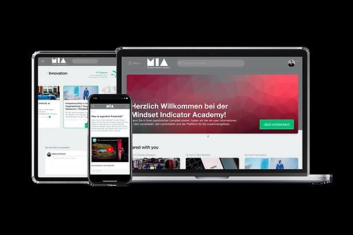 Mindset Indicator Academy MIA Lernen Customizing