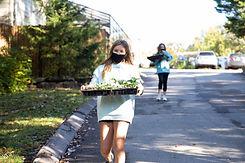 Students selling seedlings on campus