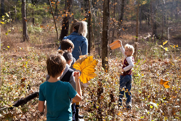 Students on a nature walk on campus