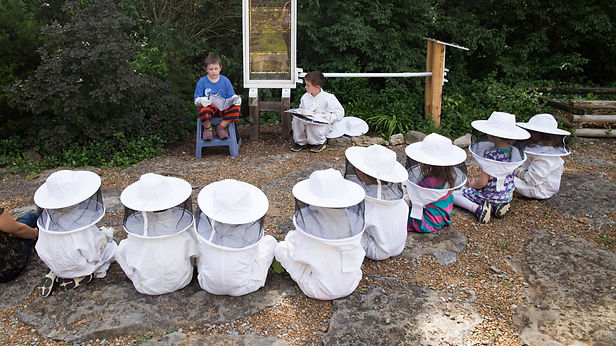 Students giving lesson on harvesting honey
