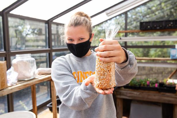 Student holding up a bag of harvested corn kernels
