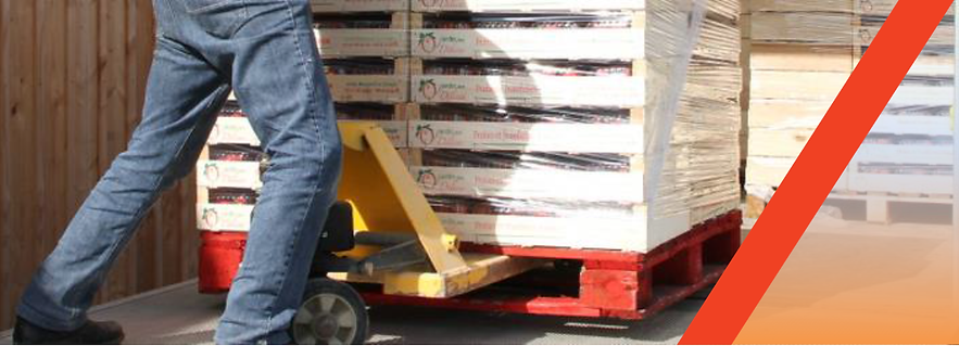 chariot de tranport de marcandise avec des palettes